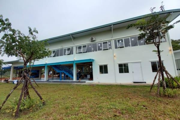Binhduongco cung cấp dịch vụ chăm sóc cỏ kiểng chuyên nghiệp, giá hợp lý